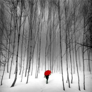 walking thru the trees