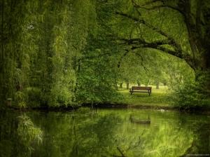 summer green bench