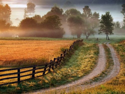 country-roads